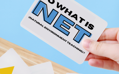 Nothing but NET (Natural Environment Training)